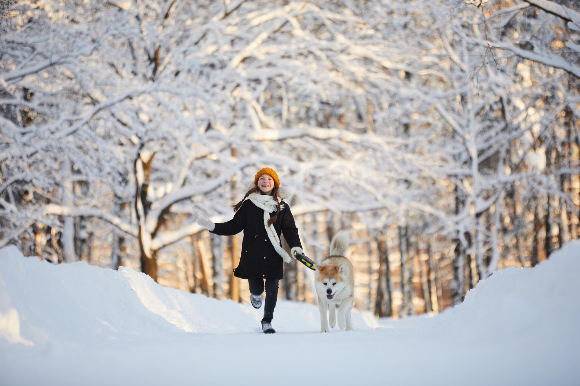 Girl Walking Dog in Winter Park